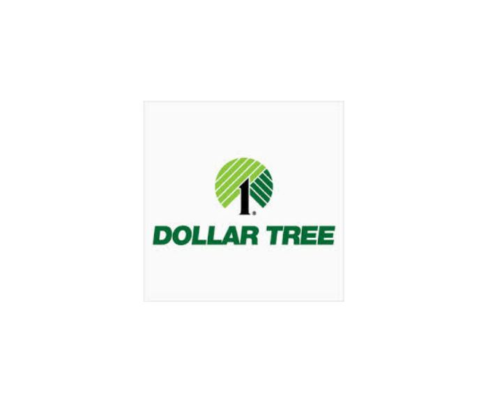 Dollar Tree Flooring Project